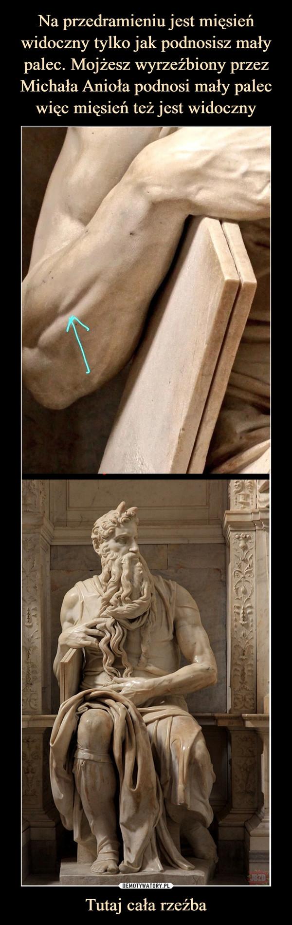 Tutaj cała rzeźba –