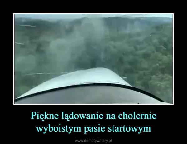 Piękne lądowanie na cholernie wyboistym pasie startowym –