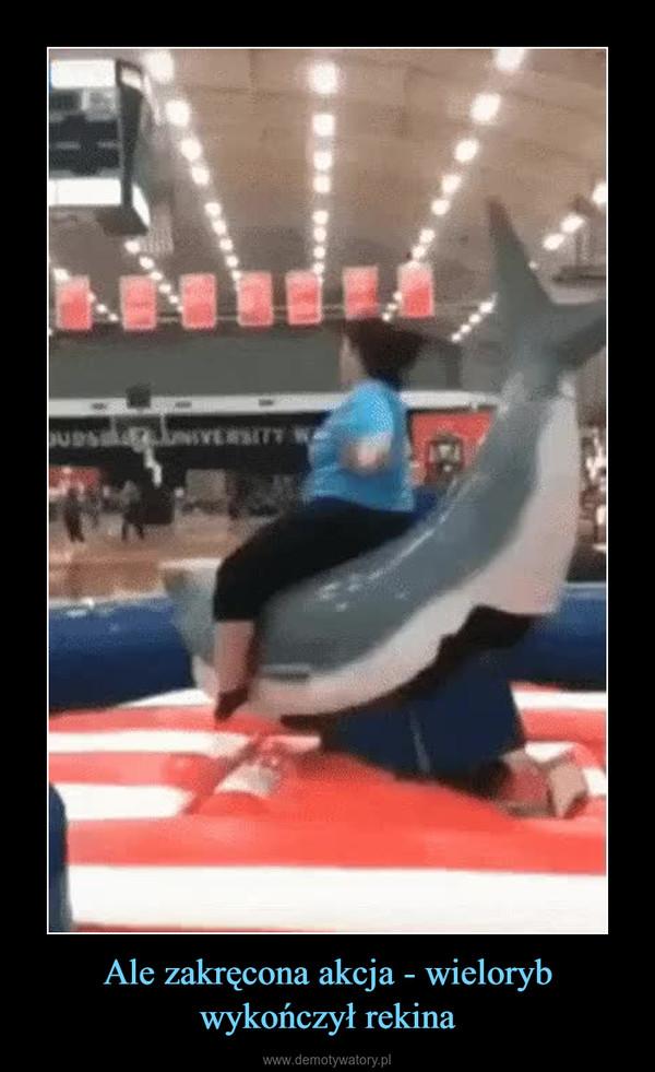 Ale zakręcona akcja - wieloryb wykończył rekina –