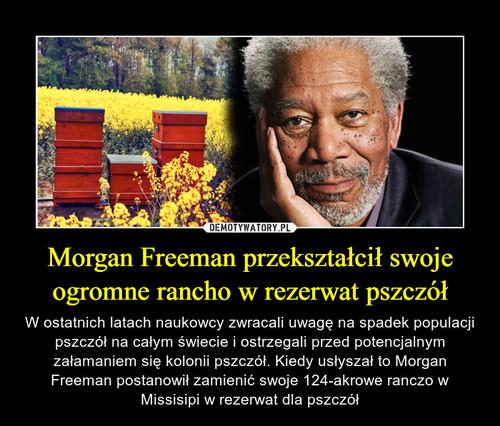 Morgan Freeman przekształcił swoje ogromne rancho w rezerwat pszczół