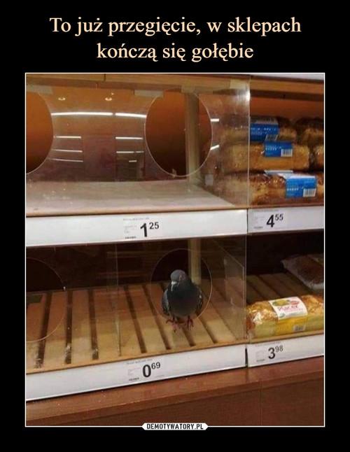 To już przegięcie, w sklepach kończą się gołębie
