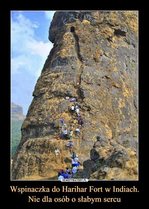 Wspinaczka do Harihar Fort w Indiach. Nie dla osób o słabym sercu