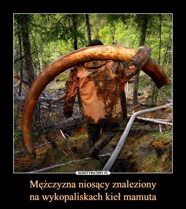 Mężczyzna niosący znalezionyna wykopaliskach kieł mamuta –
