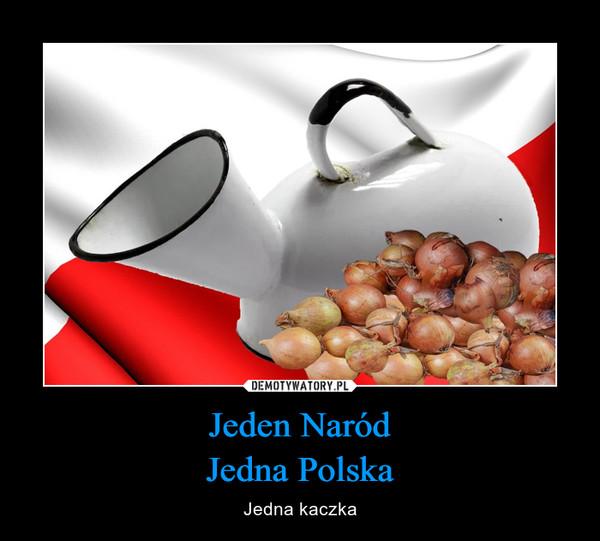 Jeden NaródJedna Polska – Jedna kaczka