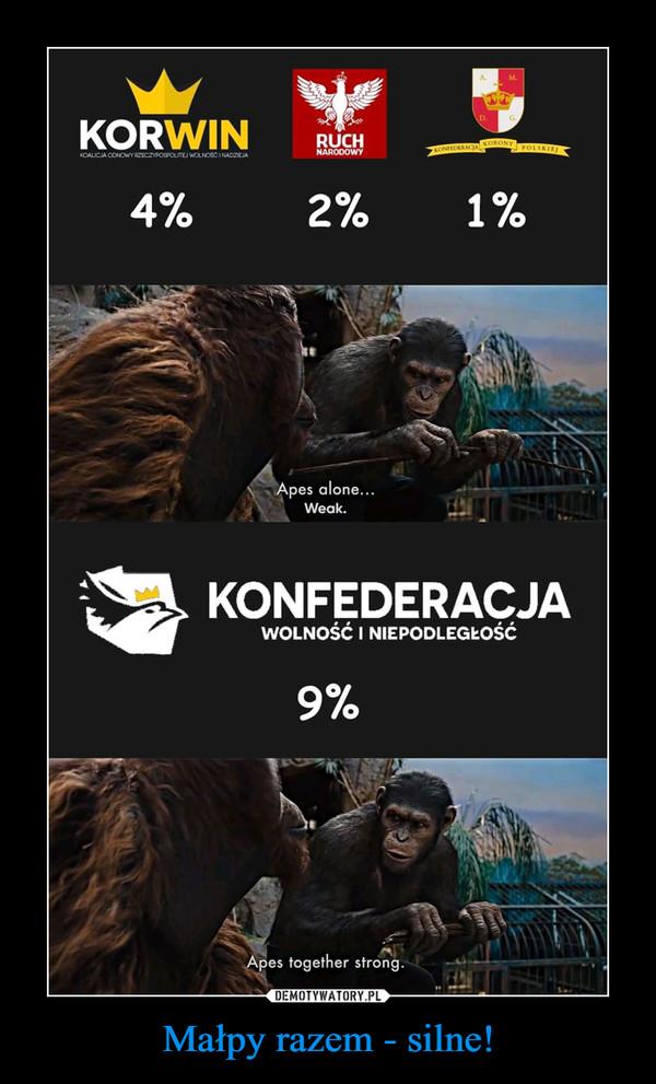 Małpy razem - silne! –