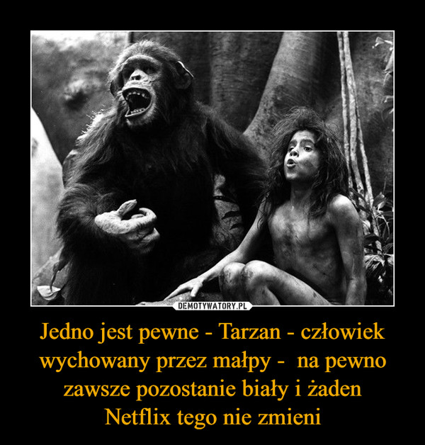 Jedno jest pewne - Tarzan - człowiek wychowany przez małpy -  na pewno zawsze pozostanie biały i żadenNetflix tego nie zmieni –