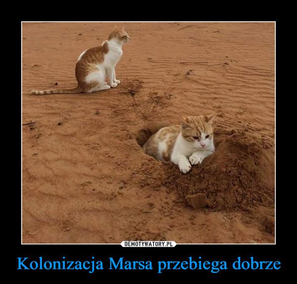 Kolonizacja Marsa przebiega dobrze –
