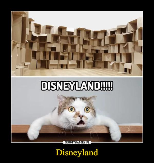 Disneyland –