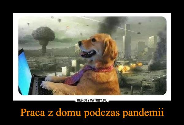 Praca z domu podczas pandemii –