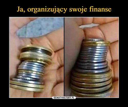 Ja, organizujący swoje finanse