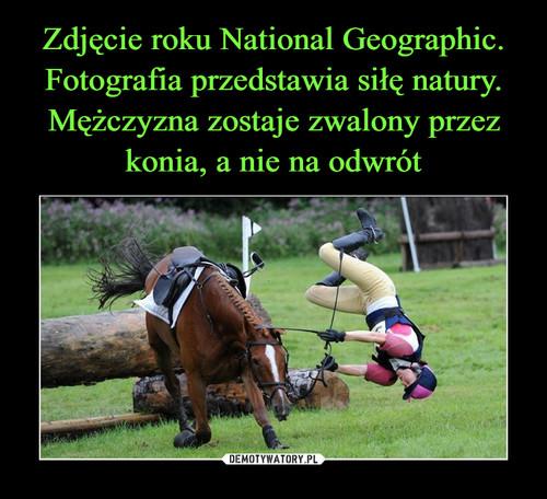 Zdjęcie roku National Geographic. Fotografia przedstawia siłę natury. Mężczyzna zostaje zwalony przez konia, a nie na odwrót