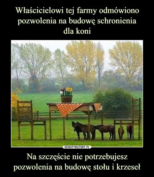 Właścicielowi tej farmy odmówiono pozwolenia na budowę schronienia dla koni Na szczęście nie potrzebujesz pozwolenia na budowę stołu i krzeseł