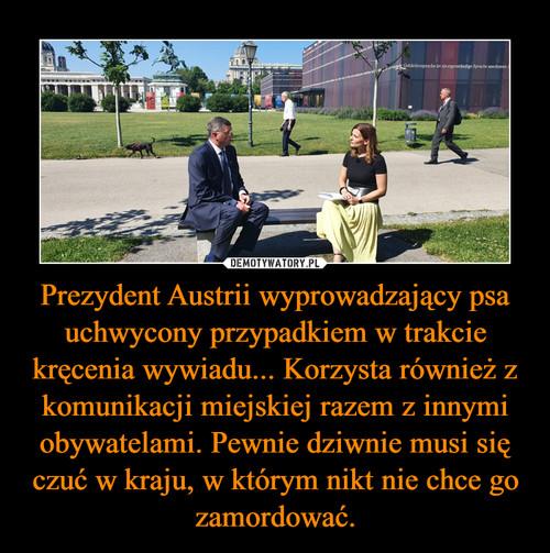 Prezydent Austrii wyprowadzający psa uchwycony przypadkiem w trakcie kręcenia wywiadu... Korzysta również z komunikacji miejskiej razem z innymi obywatelami. Pewnie dziwnie musi się czuć w kraju, w którym nikt nie chce go zamordować.