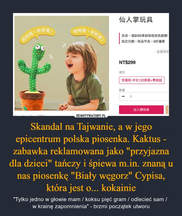 """Skandal na Tajwanie, a w jego epicentrum polska piosenka. Kaktus - zabawka reklamowana jako """"przyjazna dla dzieci"""" tańczy i śpiewa m.in. znaną u nas piosenkę """"Biały węgorz"""" Cypisa, która jest o... kokainie – """"Tylko jedno w głowie mam / koksu pięć gram / odlecieć sam / w krainę zapomnienia"""" - brzmi początek utworu"""
