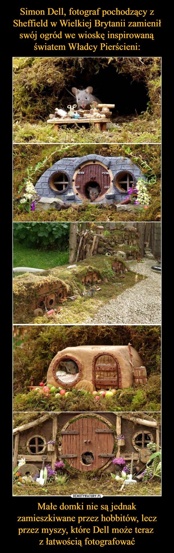 Małe domki nie są jednak zamieszkiwane przez hobbitów, lecz przez myszy, które Dell może teraz z łatwością fotografować –