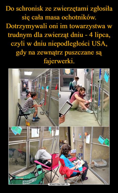 Do schronisk ze zwierzętami zgłosiła się cała masa ochotników. Dotrzymywali oni im towarzystwa w trudnym dla zwierząt dniu - 4 lipca, czyli w dniu niepodległości USA, gdy na zewnątrz puszczane są fajerwerki.