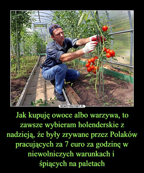 Jak kupuję owoce albo warzywa, to zawsze wybieram holenderskie z nadzieją, że były zrywane przez Polaków pracujących za 7 euro za godzinę w niewolniczych warunkach i śpiących na paletach –
