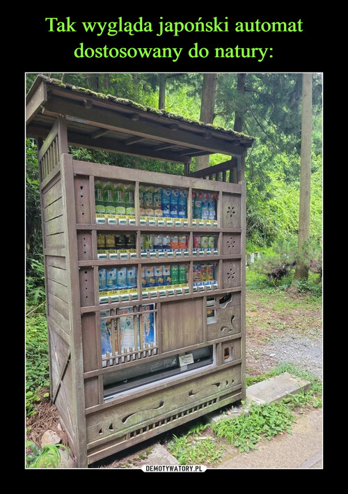 Tak wygląda japoński automat dostosowany do natury: