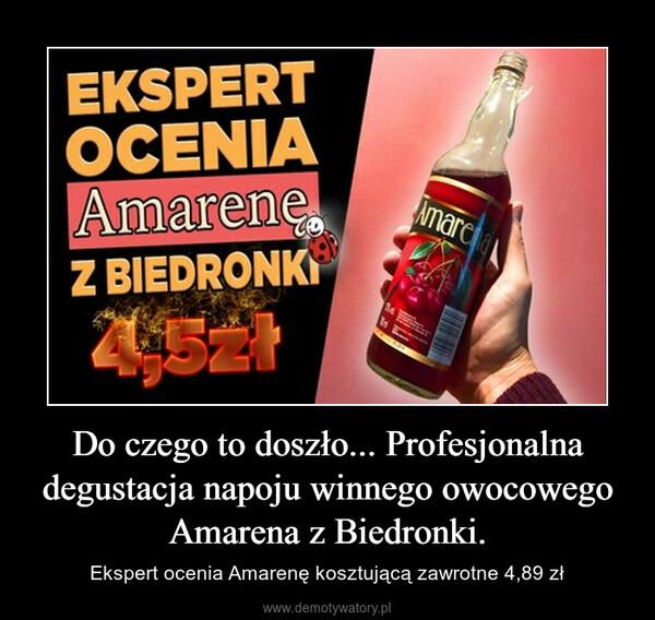 Do czego to doszło... Profesjonalna degustacja napoju winnego owocowego Amarena z Biedronki. – Ekspert ocenia Amarenę kosztującą zawrotne 4,89 zł