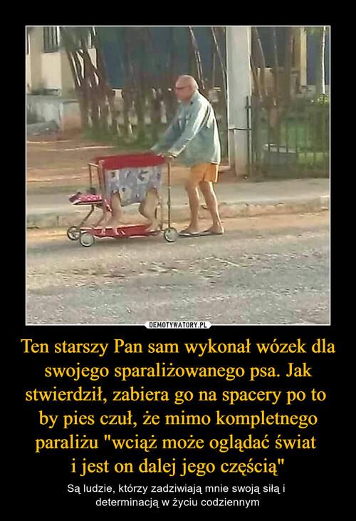 """Ten starszy Pan sam wykonał wózek dla swojego sparaliżowanego psa. Jak stwierdził, zabiera go na spacery po to  by pies czuł, że mimo kompletnego paraliżu """"wciąż może oglądać świat  i jest on dalej jego częścią"""""""