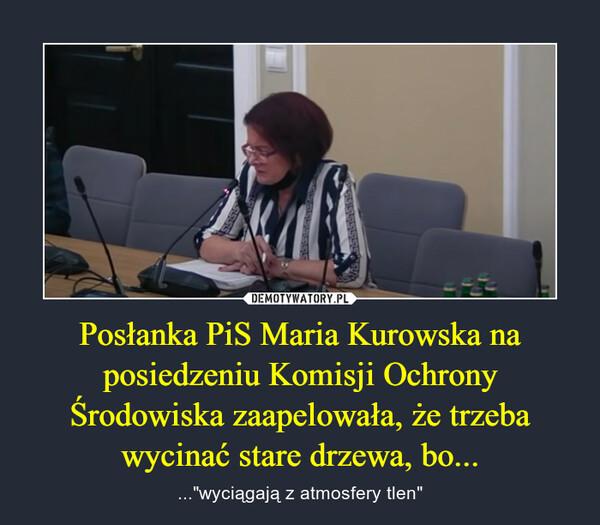 """Posłanka PiS Maria Kurowska na posiedzeniu Komisji Ochrony Środowiska zaapelowała, że trzeba wycinać stare drzewa, bo... – ...""""wyciągają z atmosfery tlen"""""""