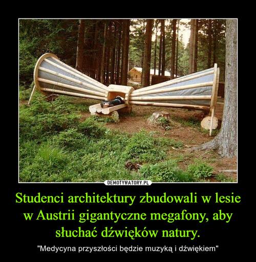 Studenci architektury zbudowali w lesie w Austrii gigantyczne megafony, aby słuchać dźwięków natury.