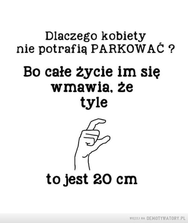 1553158430_wjjg4n_600.jpg